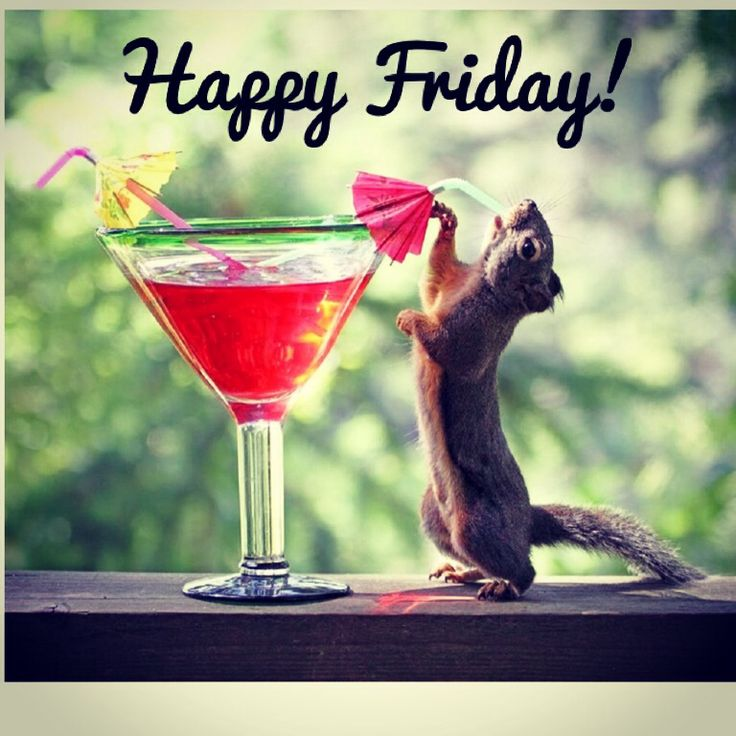 Best 25+ Happy Friday Quotes Ideas On Pinterest | Weekend Quotes, Friday  And Fun Weekend Quotes