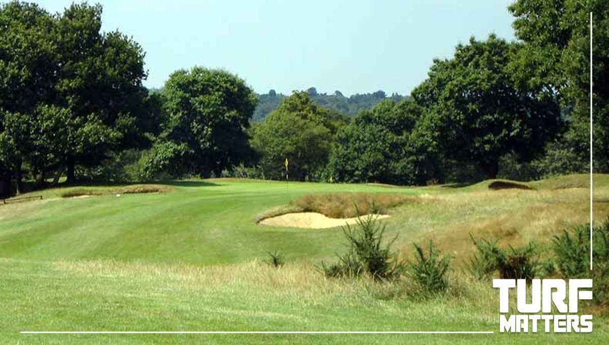 turf matters on twitter turfrecruit royal wimbledon golf club are looking to appoint an assistant greenkeeper httpstcobmg2aytsz8 jobs - Golf Assistant Jobs