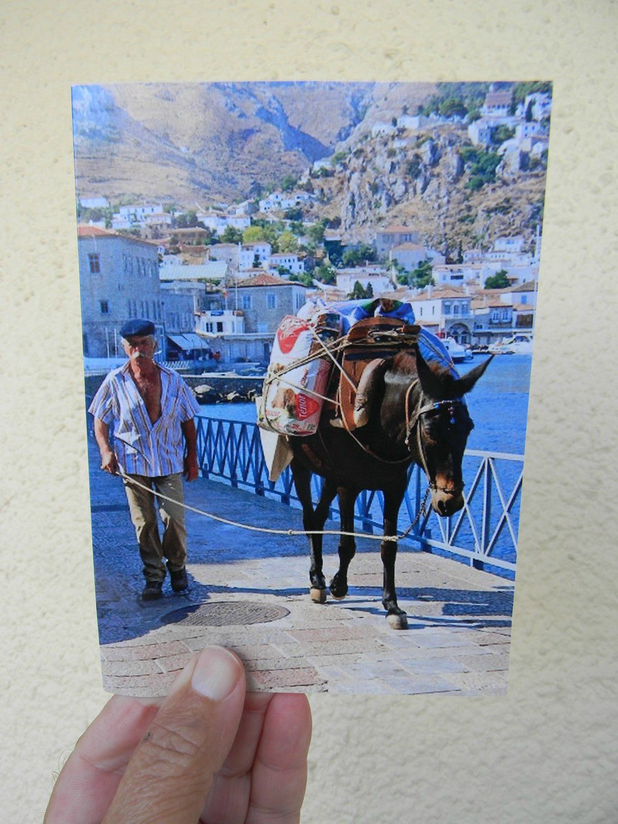 TravelAgents Veterinarians HomeRepair Healthcare Contractors Insurance DID YOU SEND HolidayCards Or BIRTHDAY Cards To Appreciate Clients