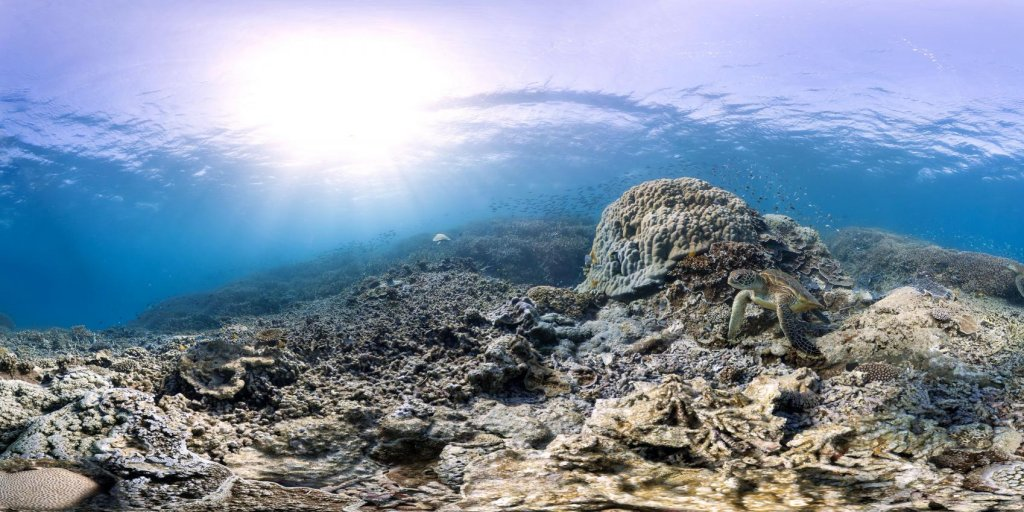 The world's oceans are in even worse shape than we thought https://t.co/WQBJYlNXc0