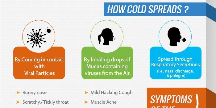 RT Common Cold Infographic ➡ https://t.co/kQ5kzt4FEG https://t.co/dIN1bpwCpb #health #well