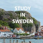 Be a guest researcher in Sweden between Sept - Dec, 2018!  #MistraGeopolitics Research school is offering financial support to 3 PhD students whose dissertation topic is clearly linked to research areas within the program.   Read more & apply before 1Feb: https://t.co/porY3eb0EU