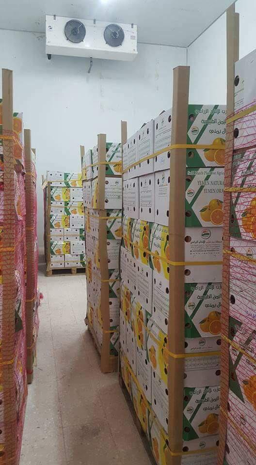 RT @amerAlhamiqaniu: من منتجات #مأرب الخير التى يتم تصديرها إلى دول الخليج  #هويه_اليمن https://t.co/s6tOllJtS5