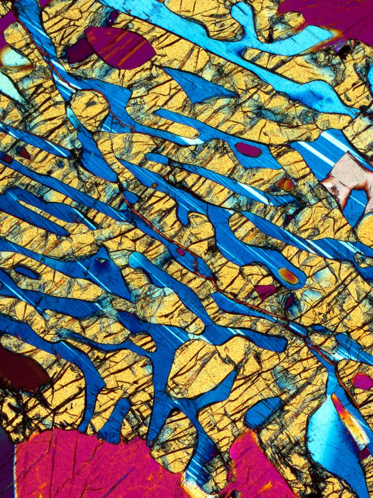 A symplectic intergrowth of pyroxene (golden) and plagioclase (blue) in a granulite from N. Manitoba, Canada. These minerals formed by replacement of a preexisting crystal of garnet. Sample courtesy of Martha Growdon #ThinSectionThursday #geology #sciart #scicomm<br>http://pic.twitter.com/sW94gF2wD2