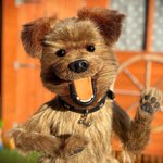 RT @CBBC_Hacker: In honour of #WinnieThePoohDay I'...
