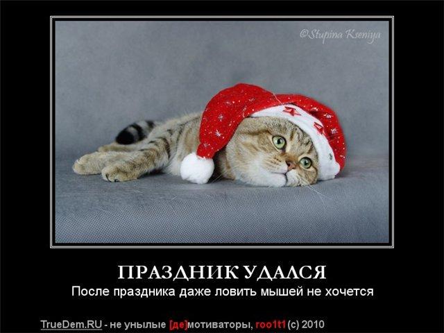 возможности ура на работу картинки смешные после нового года остается только периодически