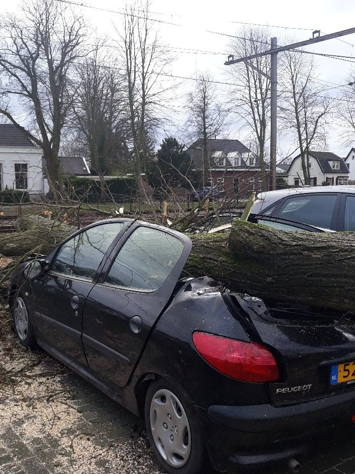 RT @rpvanmeurs: Altijd al een cabrio willen hebben? olst storm https://t.co/Skg45jANQn