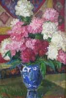 Васильки садовые фото цветов
