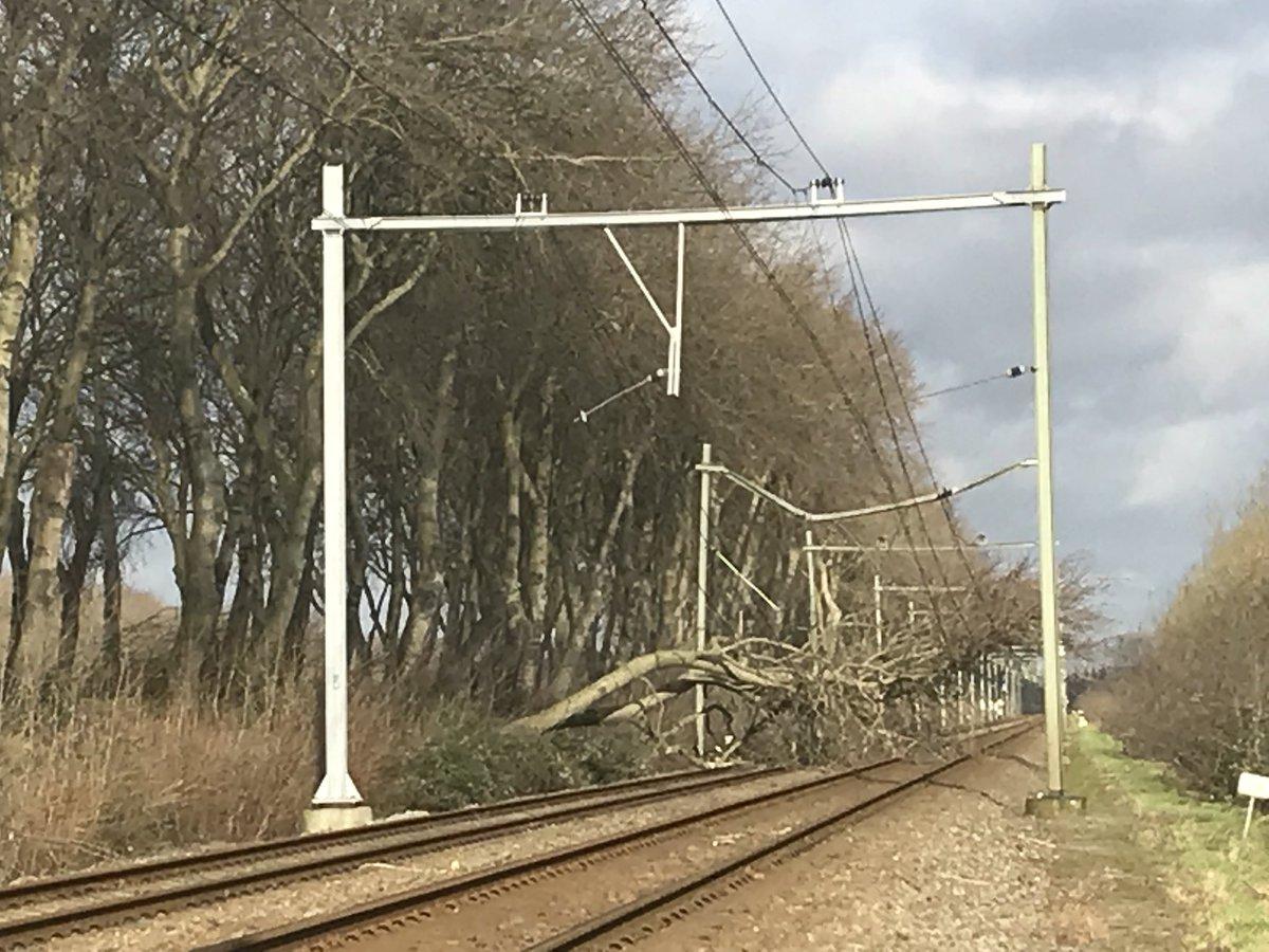 RT @simone_vogel: Waarschijnlijk vandaag geen treinverkeer meer naar Souburg en Vlissingen door gevallen boom. Opruimwerkzaamheden kunnen u…