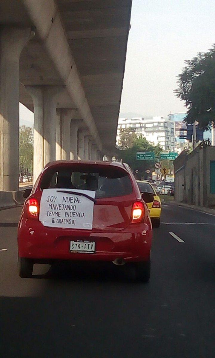 RT @889Noticias: #Viral  En redes sociales circula la imagen de esta conductora.  Si la ven, ténganle paciencia.  PG https://t.co/FSu2WGQArd