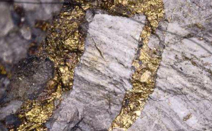 месторождение золота в вко неистово скачут