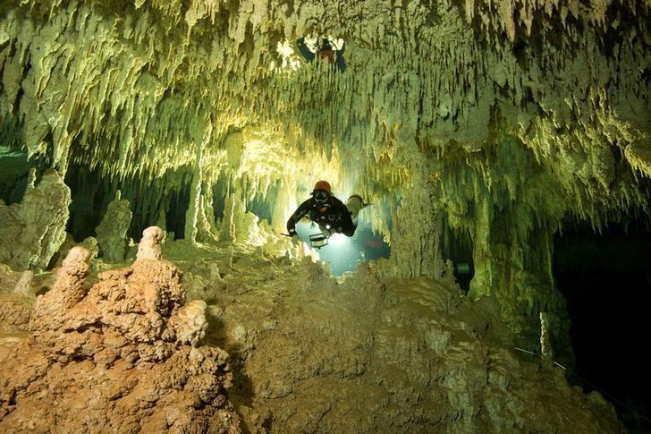 メキシコで地球最大規模の水中洞窟を確認、マヤ文明研究の一助に  https://t.co/yw486RfpNP