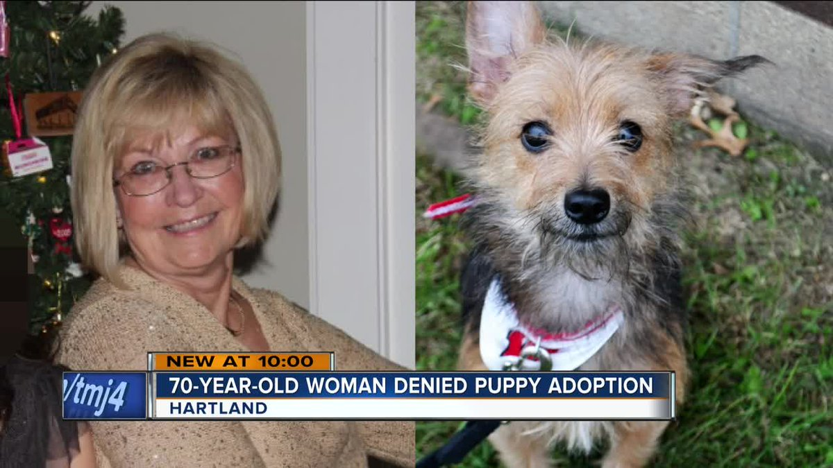Age likely why Wisconsin rescue group denied 70-year-old woman dog adoption https://t.co/Msg6pTDizB