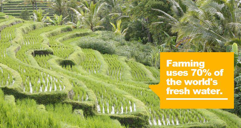 #DYK farming uses 70% of the world's fresh water?