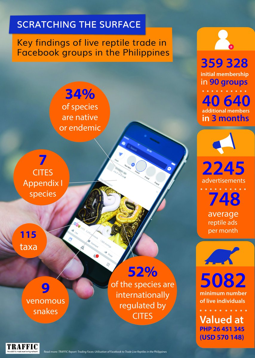 New TRAFFIC study reveals a flourishing trade in #reptiles on #Facebook in  the #Philippines. See the crazy numbers in graphic below. #wildlife  https:// tinyurl.com/yaledx2b  &nbsp;  <br>http://pic.twitter.com/cbjkObvTMA