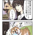 #ガルパン #4コマ漫画 #柴犬 pic.twitter.com/M1V8DDBaXF