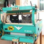 クロネコヤマトの箱に猫入れる人はちょいちょい見かけるけど、デコトラまで作った奴は僕くらいやと思います…