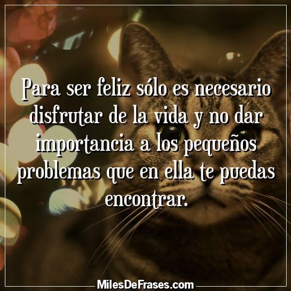 Twitter पर Frases En Imagenes Para Ser Feliz Solo Es Necesario