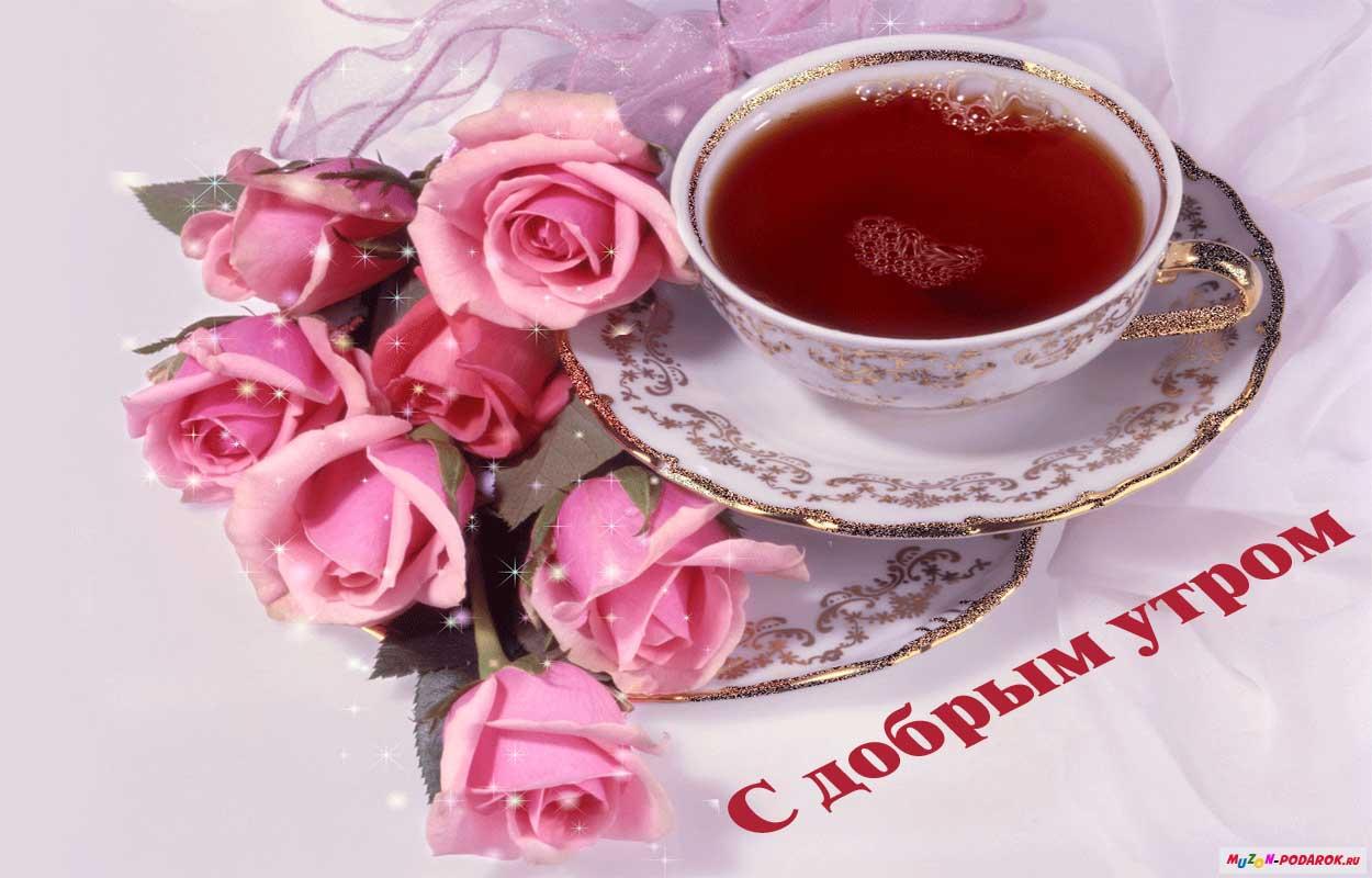 Картинки цветы с добрым утром подруги