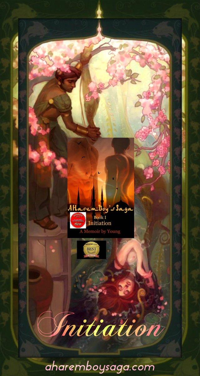 A Harem Boy's Saga - Book I - INITIATION...