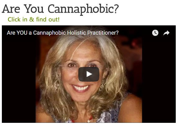 How would you rate your knowledge of #cannabis? - Are you cannaphobic? #medical #marijuana #Health #healthcare   http:// holisticcannabisacademy.com/academy-detail s/ &nbsp; …  by #crypticcat<br>http://pic.twitter.com/rBrVZLawCc