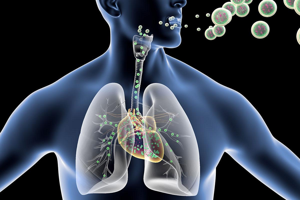 Breathing in a nanoparticle spray could prevent heart damage https://t.co/xigJ606Cpe