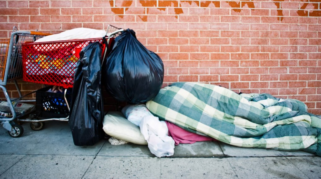 homeless in the united states It's impossible to determine how many stray dogs and cats live in the united states estimates for cats alone range up to 70 million only 10% of the animals received by shelters have been spayed or neutered.