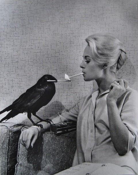 Happy birthday to Tippi Hedren. Photo by Philippe Halsman, 1962.