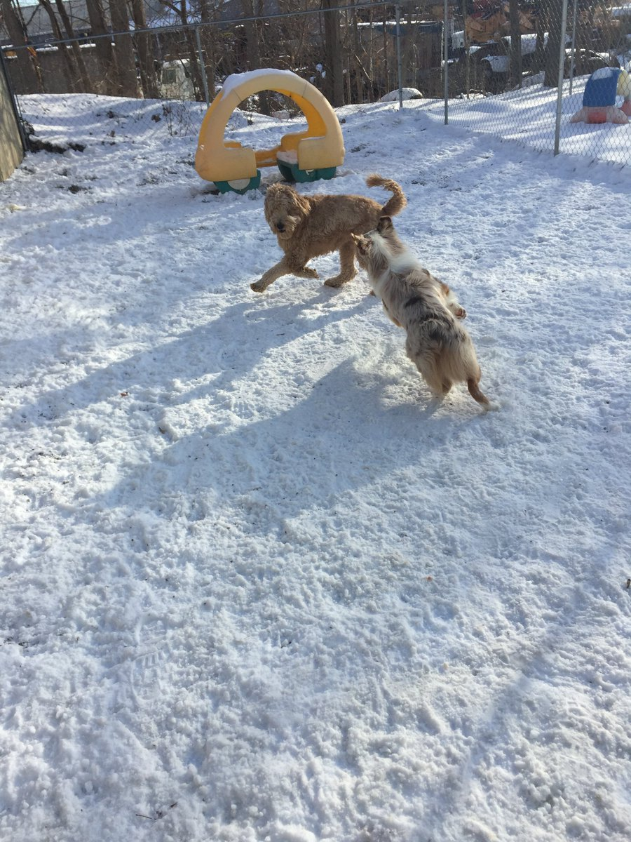 Carmine gets Ruger to chase her