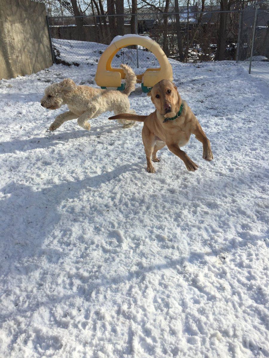 Kipling and Riley H. do a little dance