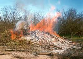 The fodder get remained in the fields, should not be burnt at all and put a step forward for #PollutionFreeEnvironment.  #SaintRamRahim_Initiative73<br>http://pic.twitter.com/SRXRZ1uplN