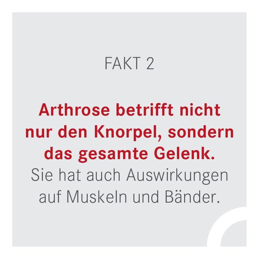 Schön Untersuchungs Timeline Vorlage Bilder - Entry Level Resume ...