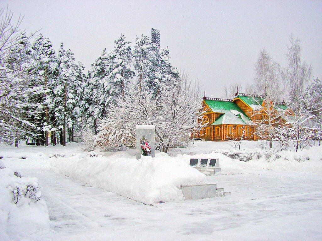 Зимняя шапка збройних сил фото приколы