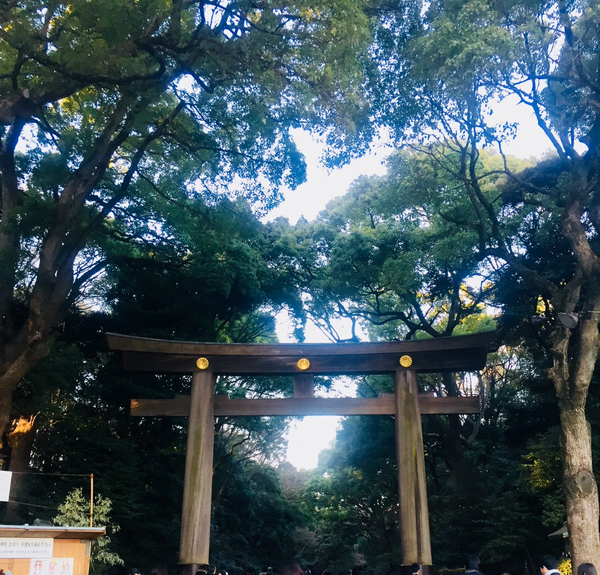 【staff 4PM blog】ちょっと遅めの初詣-First Visit to Shrine  https://t.co/WxysDJXiIe https://t.co/7pTIHhC4mt