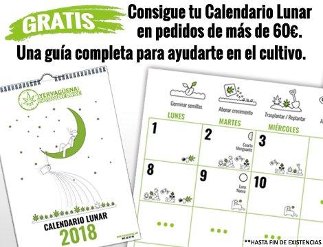 Calendario Lunar Cannabico 2019 Espana.Yervaguena Yervaguena Twitter
