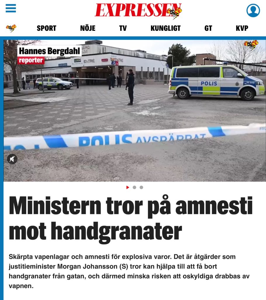Ministern tror pa amnesti mot handgranater