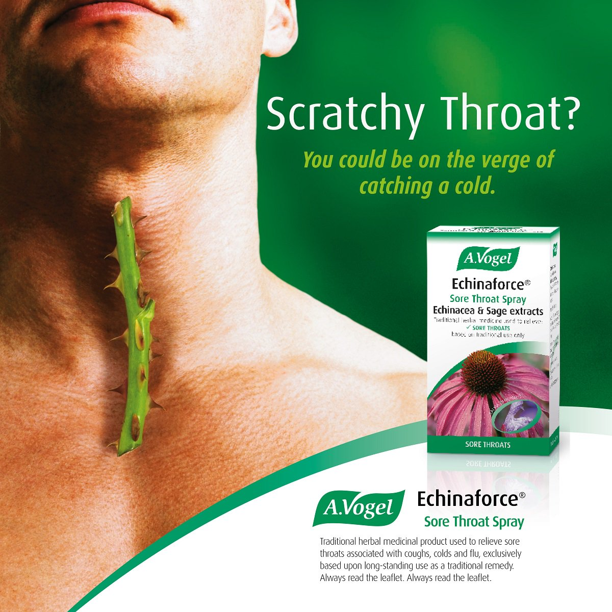 Herbal Remedies For The Relief Of Sore Throats Including Echinaforce Throat Spray Is Handy Keeping In Your Bag When On Go