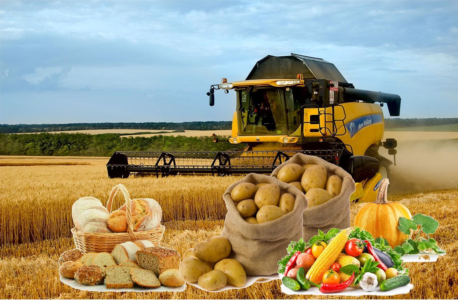 Смешные картинки, картинки сельхозпродукции