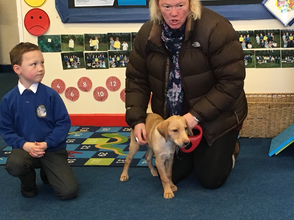 Year 1 had a special visit from Mikeys dog Logan today. Logan is training to be a police dog #animals #learning