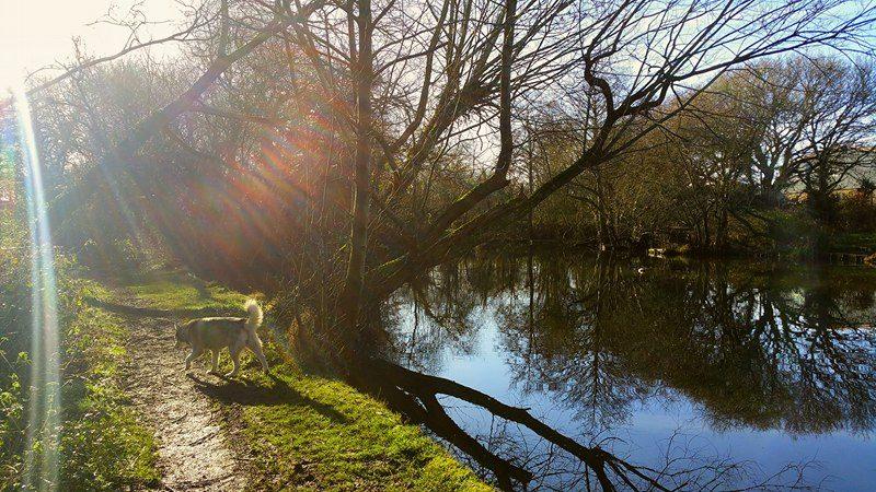 Beautiful day in #Christchurch #MudefordWoods #Dorset #Spring is on its way! @BBCWthrWatchers @AlexisGreenTV @BBCSouthWeather @Bournemouthecho<br>http://pic.twitter.com/twENmU9n5g