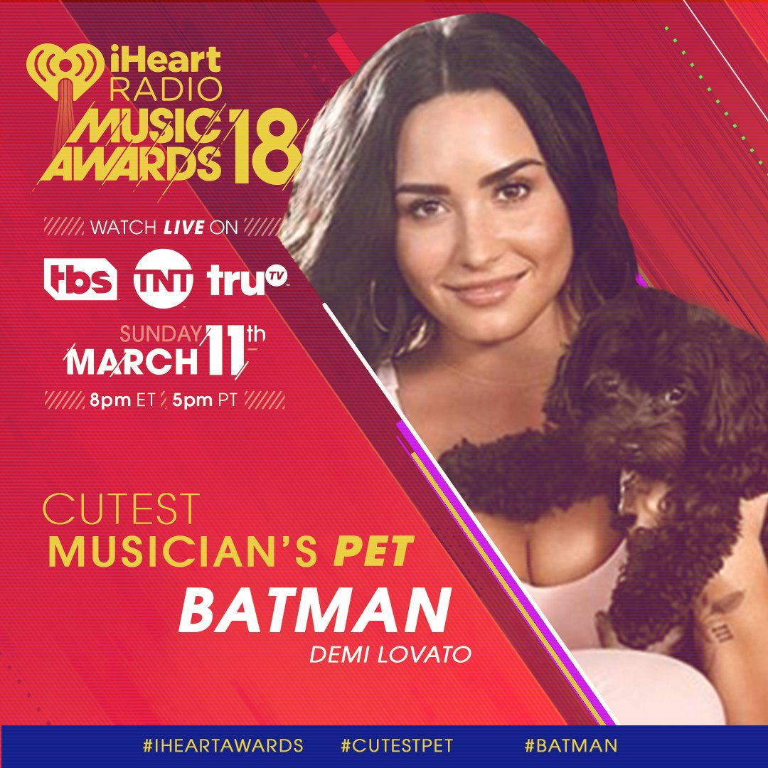 We're melting. @ddlovato's #Batman is nominated for #CutestPet at the #iHeartAwards.  RT to vote for Batman! ❤️