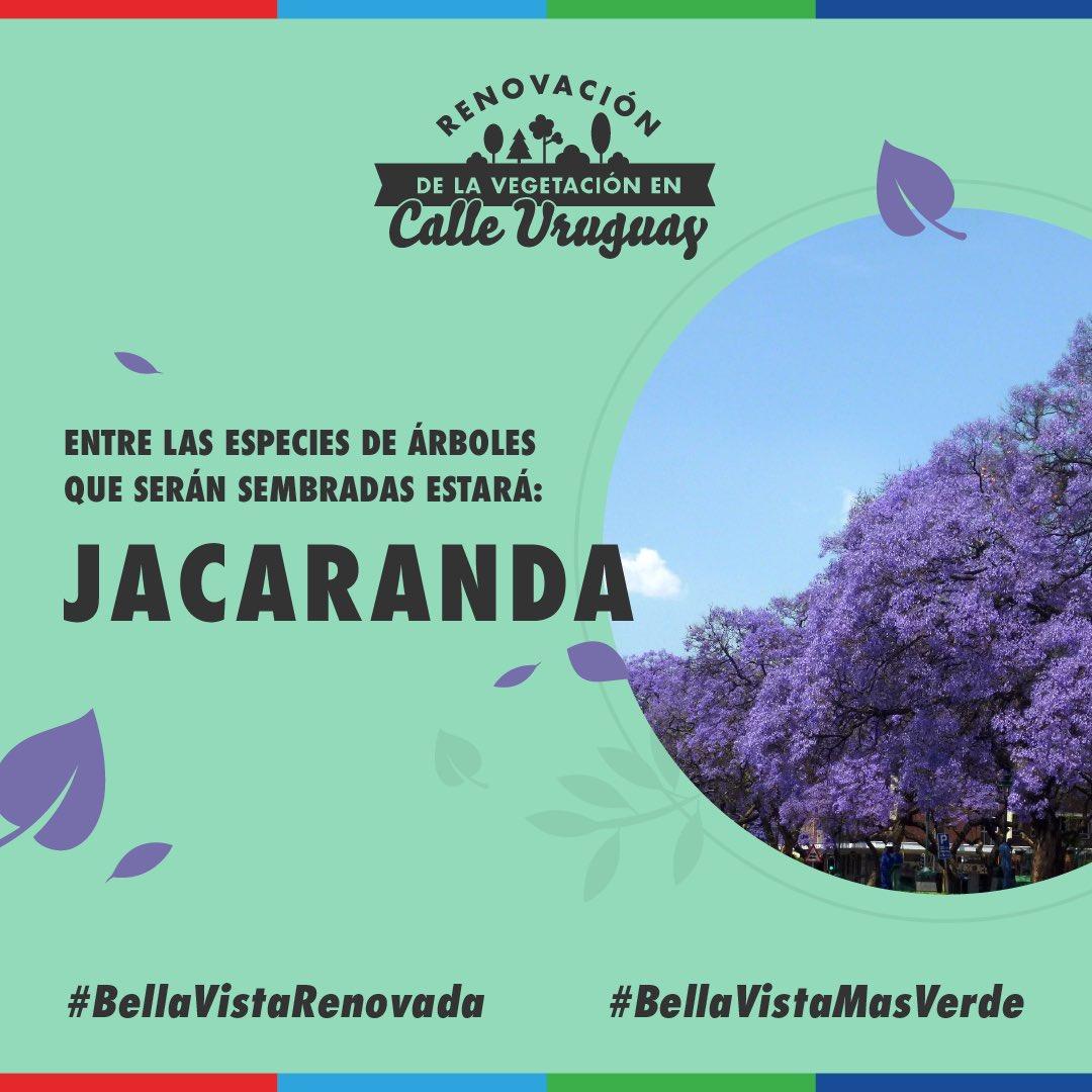 Masverde Hashtag On Twitter # Muebles Jacaranda Valladolid