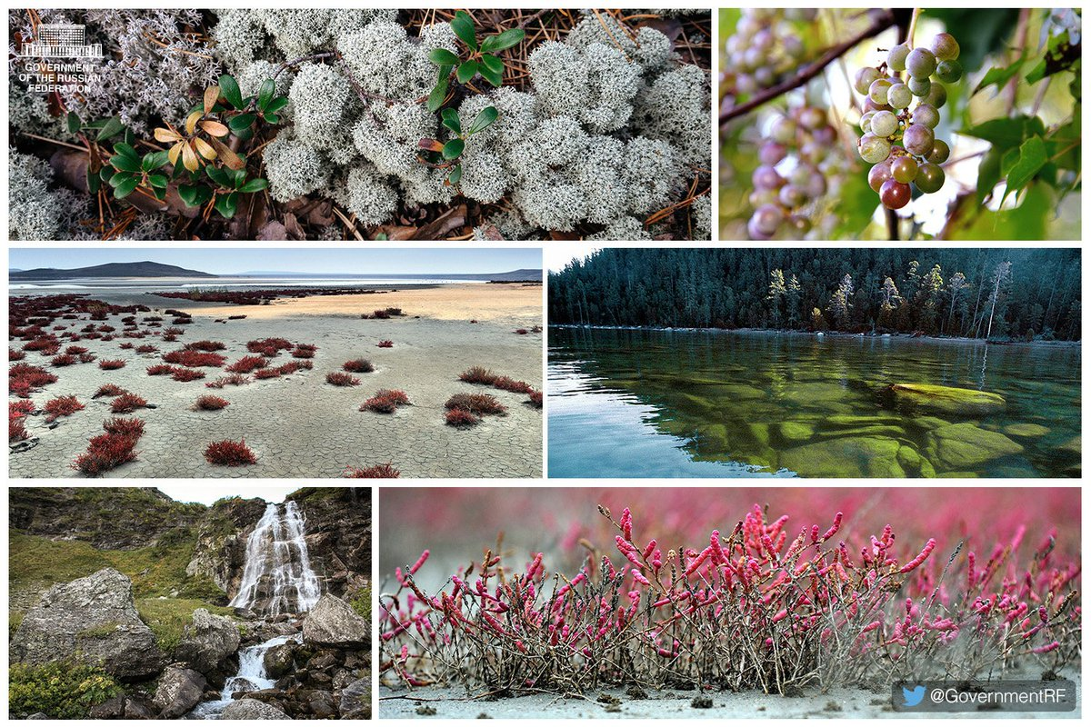 Russia marks Nature Reserves and National Parks Day today