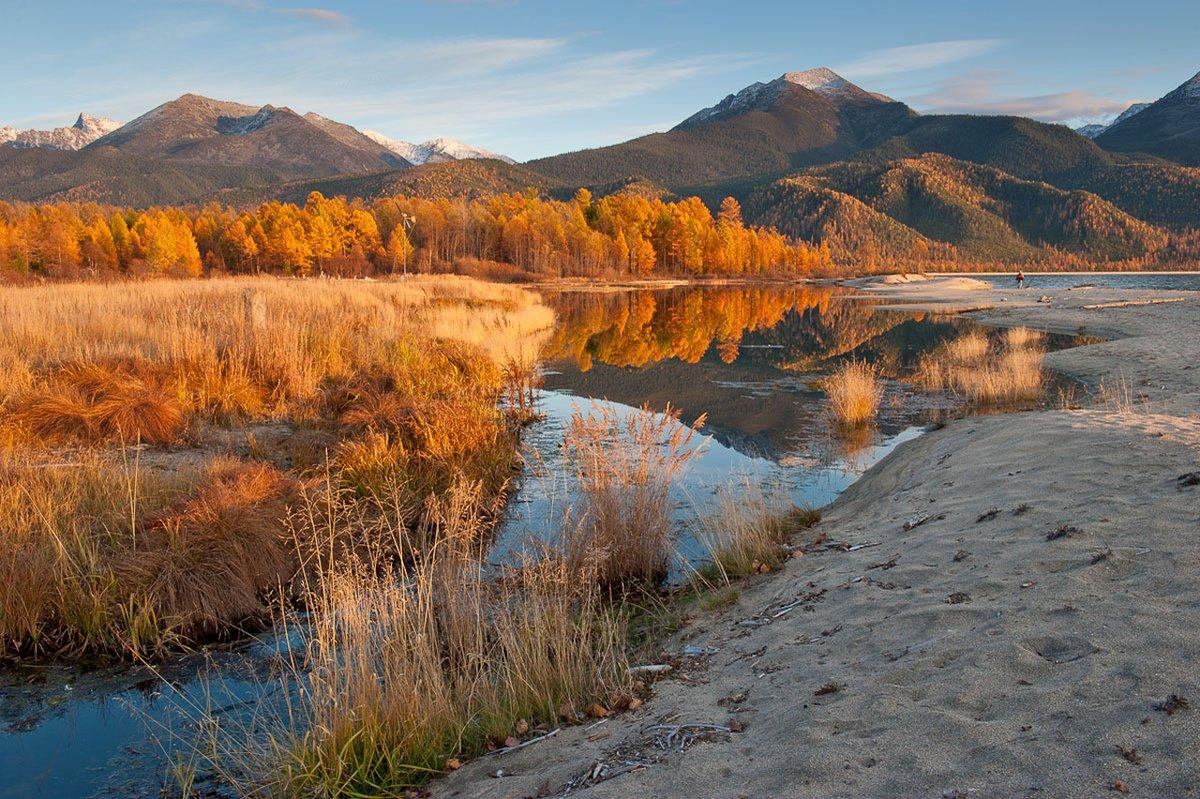 приборы картинки национального парка россии формируются