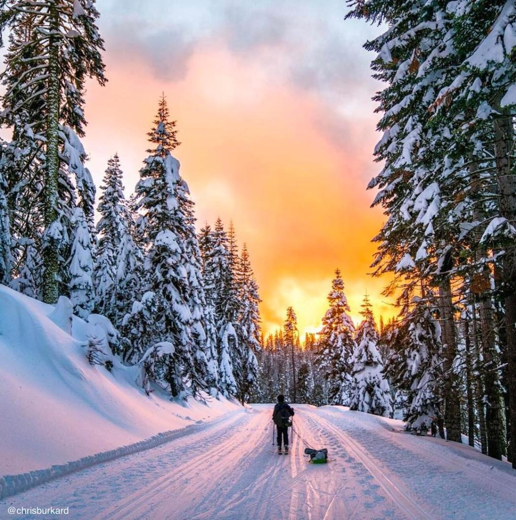 Have you been skiing in the #USA? Discover the Sierra Nevada Mountains in @VisitCA. https://t.co/PKc84rBBmJ