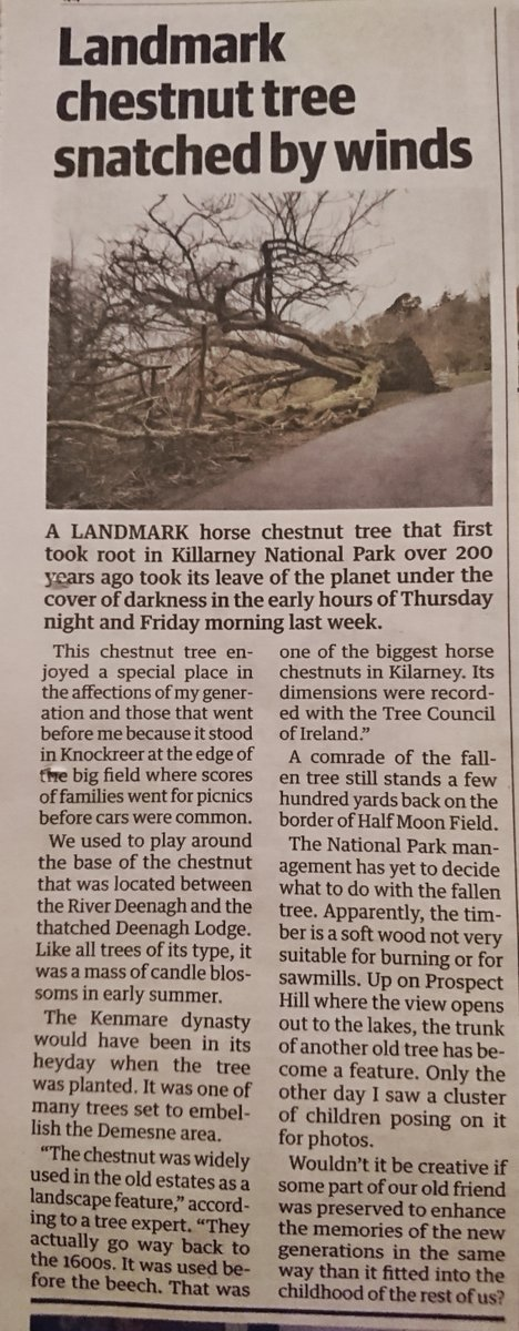 RT @Ciaraioch: Knock rural Ireland all you want but how many national papers have obituaries for trees https://t.co/732pFyH54e