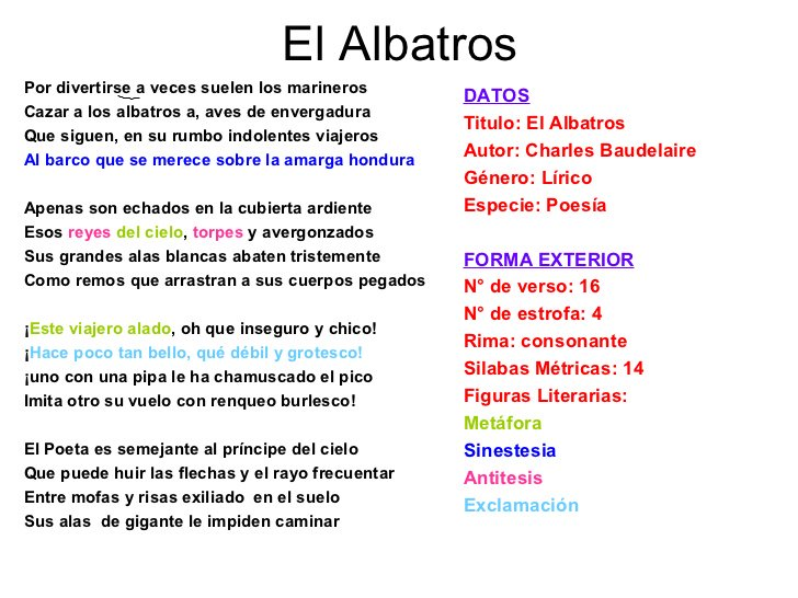 Noentemo On Twitter 10 De Enero El Poeta Es Semejante