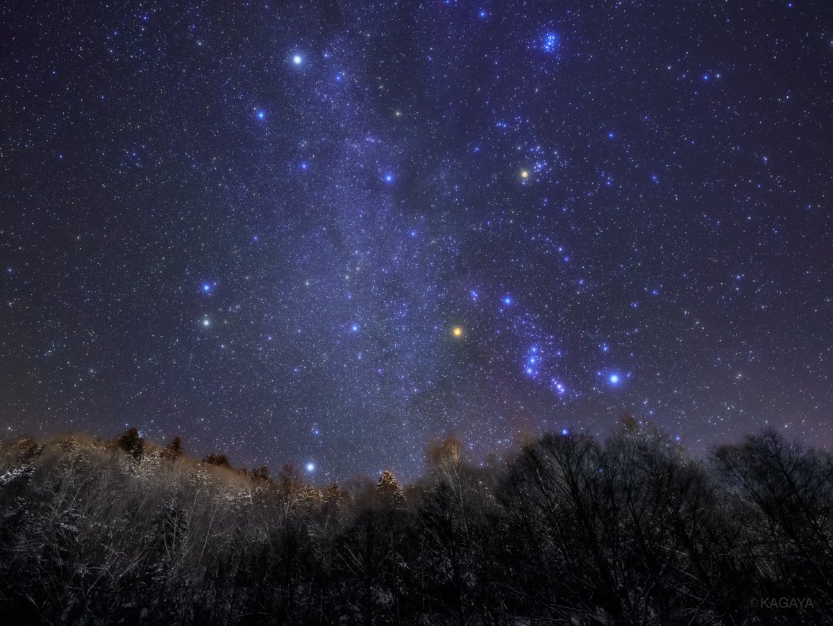 輝く冬の星座たち。 縦の淡い光の帯が冬の天の川。そのすぐ右にオリオン。(先日北海道上士幌町にて撮影)…