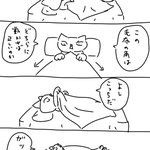 寝る時あるあるw毛布の角を90度動かすも縦と横が反対になって足が出る!