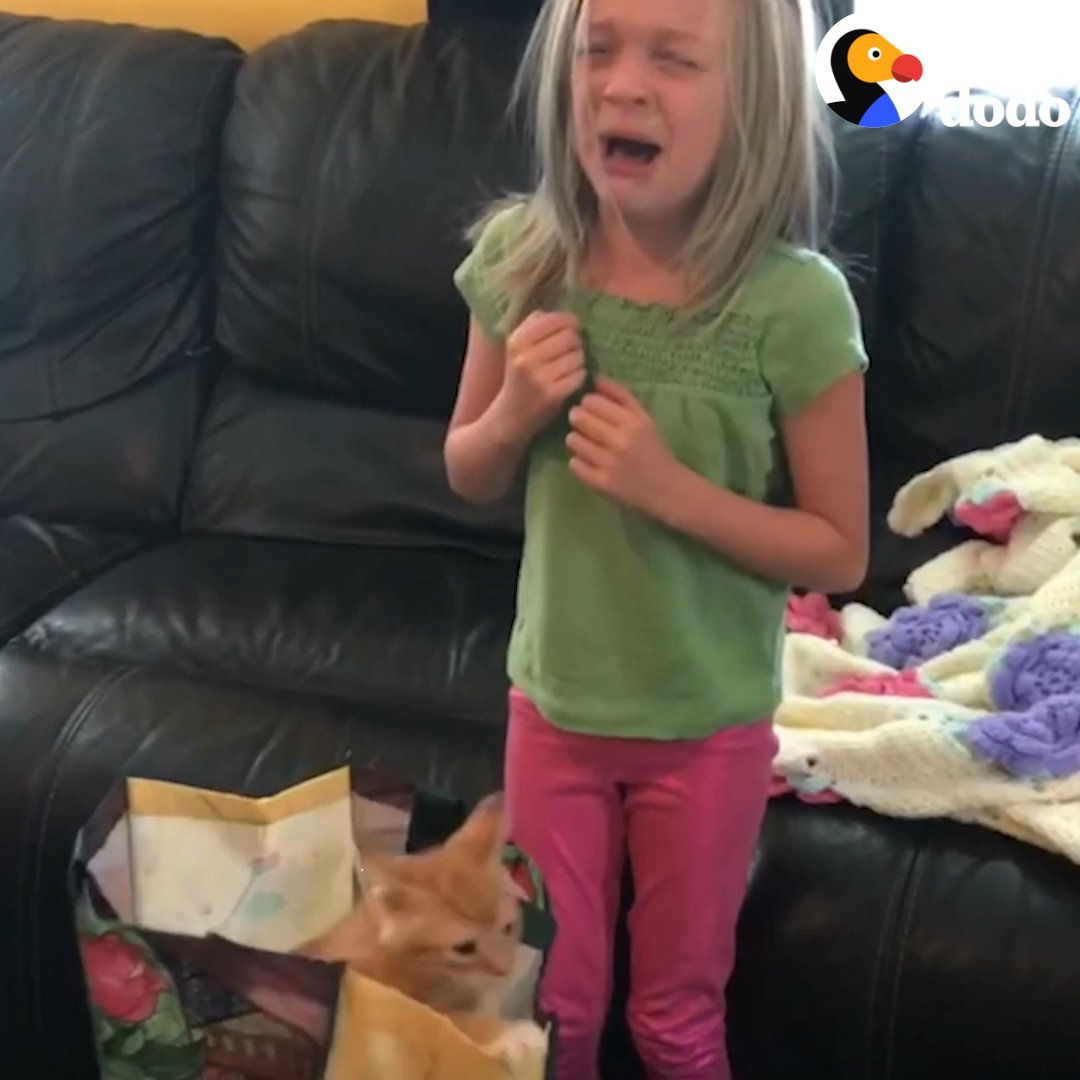 This little girl's about to get the birt...